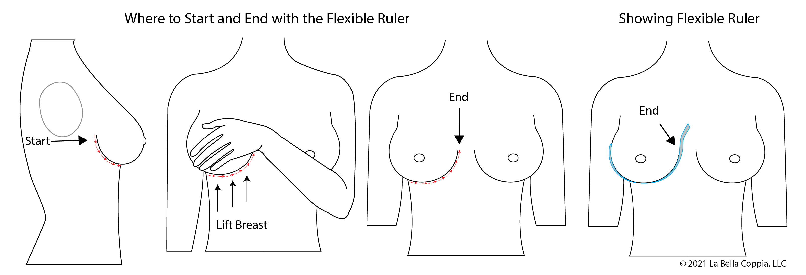 A diagram of a breast root trace, showing a flexible ruler starting at the outside of the breast root, curving around the IMF under the breast, and ending